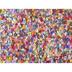2 kg di Coriandoli Colorati in Carta