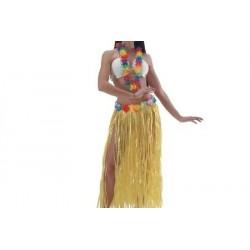 Gonnellina Hawaiana