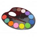Tavolozza, Pennello e 12 Colori